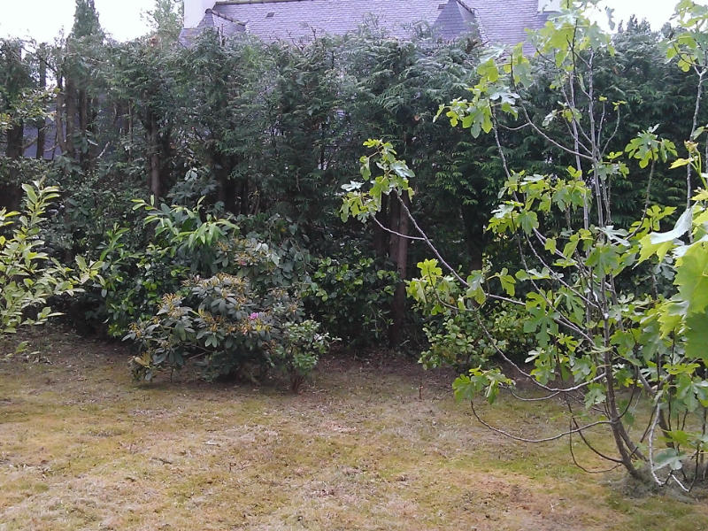 jardinage3